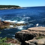 A favorite lunch spot along Maine's rocky coast in Bar Harbor. Uninvited seagulls never fail to join us.