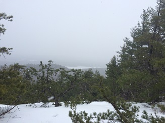 The view from Bald Pate was a pretty one even with limited visibility. Falling snowflakes made for a winter wonderland.
